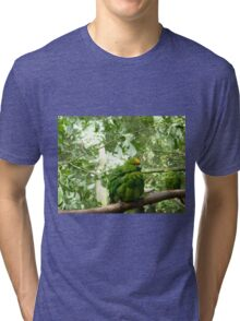 Kakapo Tri-blend T-Shirt