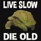 Live Slow, Die Old by jomiha