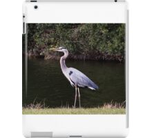 Bird Great Blue Heron iPad Case/Skin