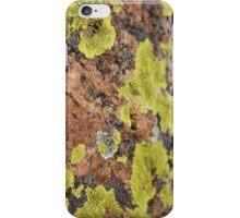 Lichen on Stone- Riggs Lake, AZ iPhone Case/Skin