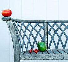 CHRISSY'S BENCH by Diane Peresie