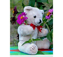 Artie Bear Photographic Print