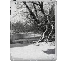 Snowy Stouts Creek iPad Case/Skin