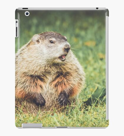 Groundhog in vintage garden setting iPad Case/Skin