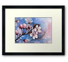 Cherry Blossoms Watercolor Framed Print