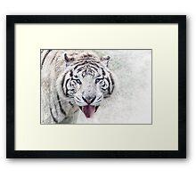 White Tiger Funny Portrait Framed Print