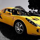 2008 Lotus Elise S by Glenn Bumford