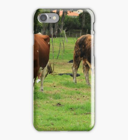 Cow and Bull iPhone Case/Skin