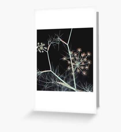 Night Whispers Greeting Card