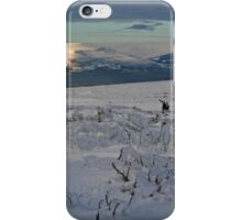 The Ice Age Is Coming iPhone Case/Skin