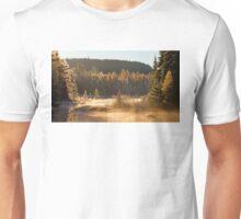 Costello Creek, Algonquin Park Unisex T-Shirt