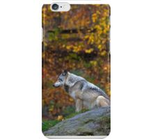 Lone Wolf - Timber Wolf iPhone Case/Skin