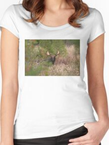 Bull Moose in Algonquin Park, Canada Women's Fitted Scoop T-Shirt
