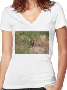 Bull Moose in Algonquin Park, Canada Women's Fitted V-Neck T-Shirt