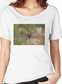 Bull Moose in Algonquin Park, Canada Women's Relaxed Fit T-Shirt