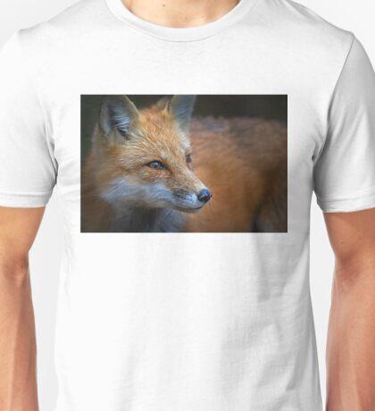 Algonquin Fox, Algonquin Park, Canada Unisex T-Shirt