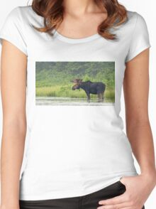 Bull Moose - Algonquin Park, Canada Women's Fitted Scoop T-Shirt