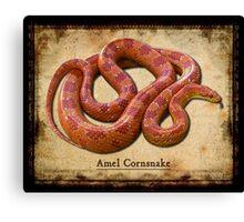 Amel Cornsnake Canvas Print