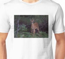 Deep Woods  - White Tailed Deer Fawn Unisex T-Shirt