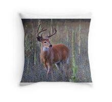 Early Morning White tailed Buck Throw Pillow