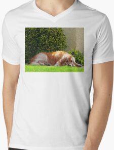 Dog Relaxing T-Shirt