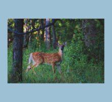 White-tailed deer fawn Kids Tee