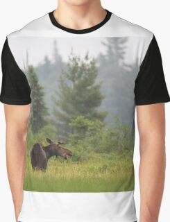 Grassy marsh moose - Algonquin Park, Canada Graphic T-Shirt
