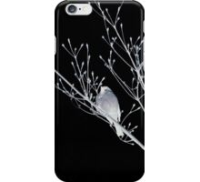 NightBirds Song iPhone Case/Skin