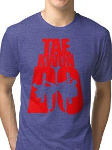 Taekwondo Mountain - Korean Martial Art Tri-blend T-Shirt