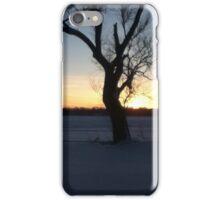Shimmering Sunset iPhone Case/Skin