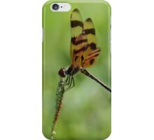 Halloween pennant iPhone Case/Skin