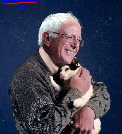 Cat and Bernie Sticker