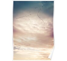 Birds fly across a majestic cloudy sky at dusk Poster