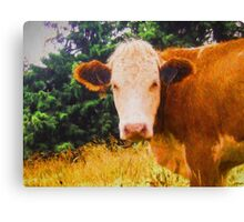 How now, brown cow? Oil painting Canvas Print