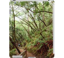 Tamalpais Hike iPad Case/Skin