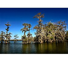 A clear day on Lake Martin Photographic Print