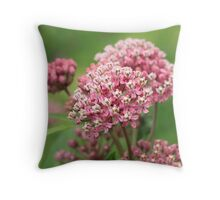 Beautiful blooming Milkweed loved by Monarchs Throw Pillow