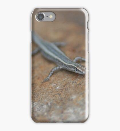 Curious Lizard iPhone Case/Skin