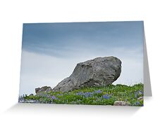Large Boulder Deposited by a Glacier in an Alpine Meadow Greeting Card