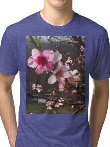 Peach Blossoms Tri-blend T-Shirt