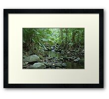 Rainforest Trickle Framed Print