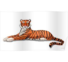 Bengal Tiger Isolated on White Background Poster