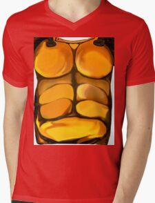 Armour Mens V-Neck T-Shirt