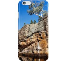 Clinging on iPhone Case/Skin