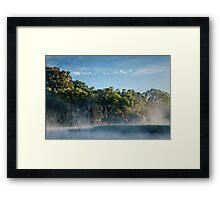 Morning at the swamp Framed Print