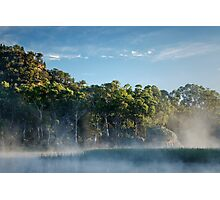 Morning at the swamp Photographic Print