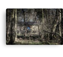 Through the Alder Wood Canvas Print