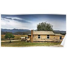 Cows home Poster