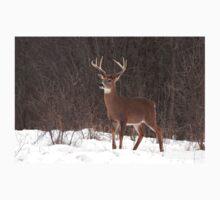 Bambi - White-tailed Buck Kids Tee