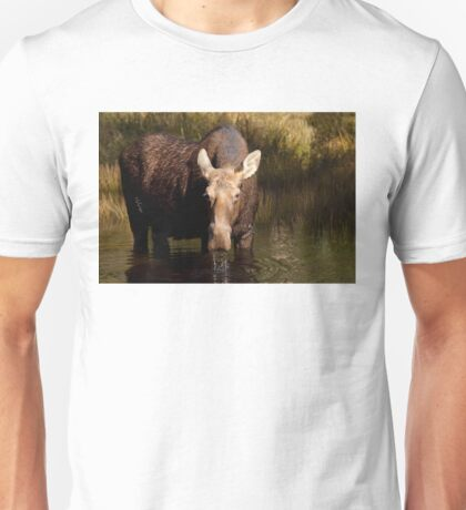 Moose - Algonquin Park, Canada Unisex T-Shirt